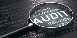 Financial Statements & Auditor's Reports June 30, 2020
